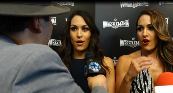 Nikki Brie Bella Bella Twins Wrestlemania 31 San Francisco Levis Stadium Interview