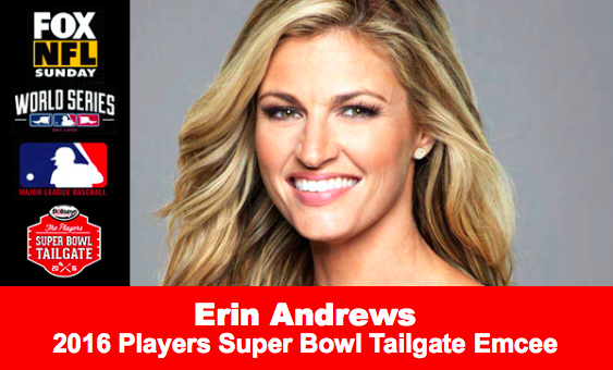 Erin Andrews Super Bowl 50 Partye